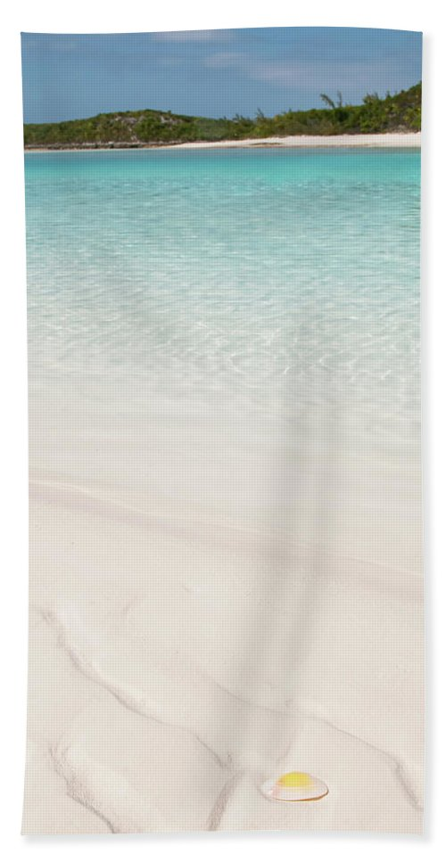 Pin On Beach Towels By Pink Palm Designs