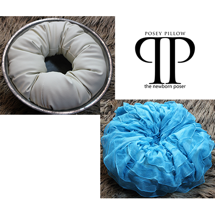 Pin By Photo Dough On Fave Photo Products Poser Pillows Newborn Photo Props