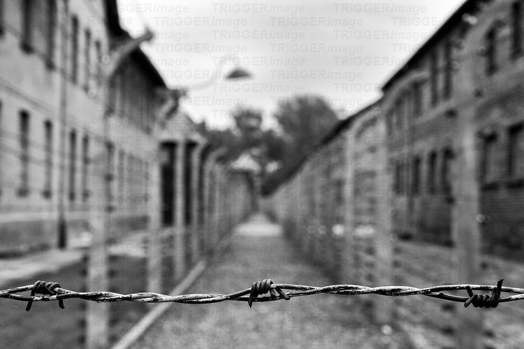 barbed wire fence concentration camp. Image Result For Barbed Wire Fence Concentration Camp A