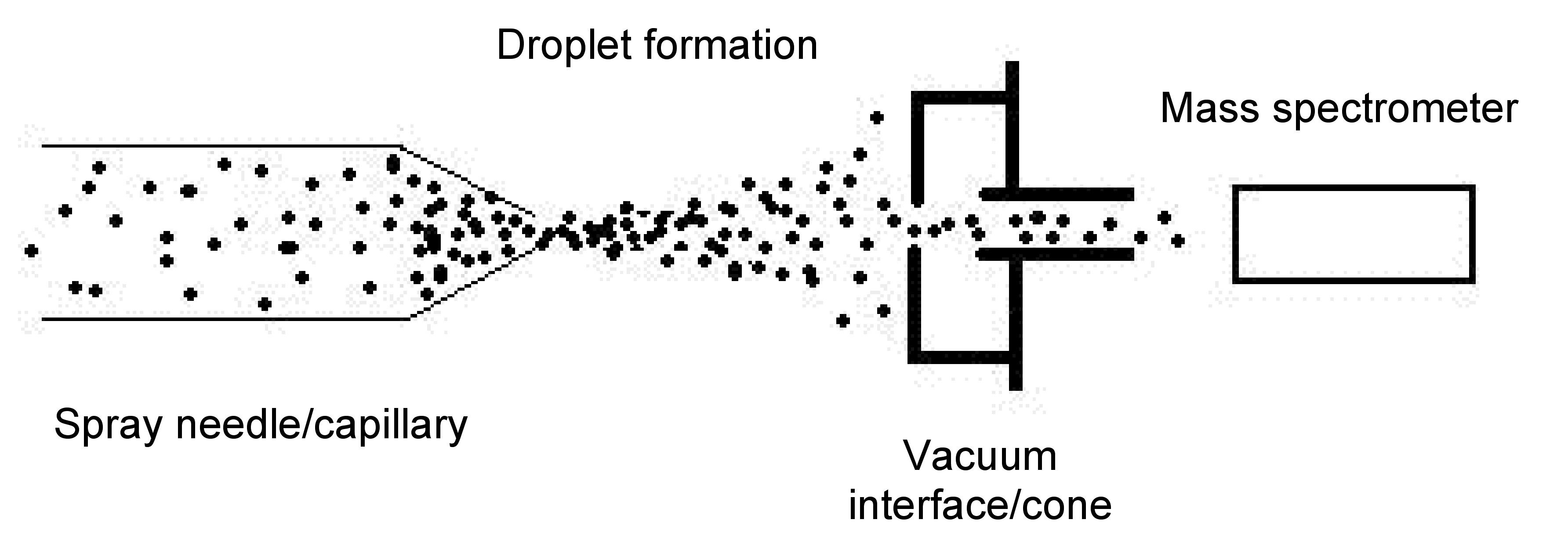 Proteinysis Using Electrospray Ionization Mass