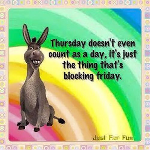 Thursday June 8 2017 With Images Thursday Humor Friday