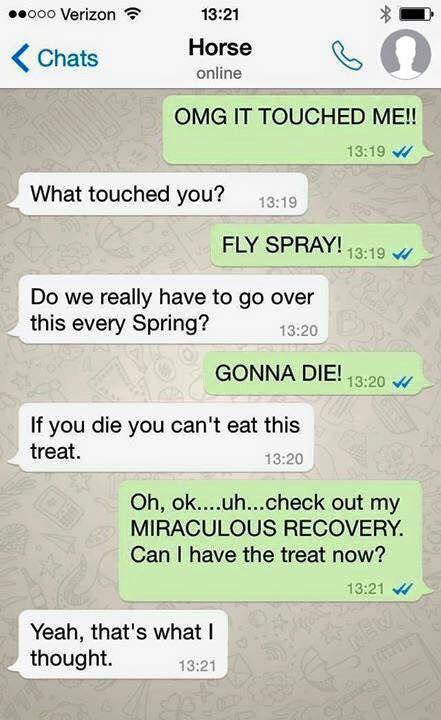 Si l'on pouvait échanger par SMS avec un cheval, cette conversation aurait tout son sens !