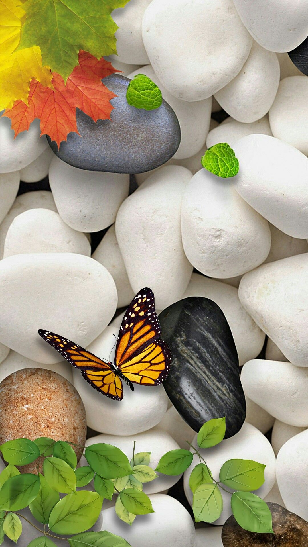 Love Nature Zen Wallpaper Stone Wallpaper Butterfly Wallpaper Butterfly Art Screen Wallpaper