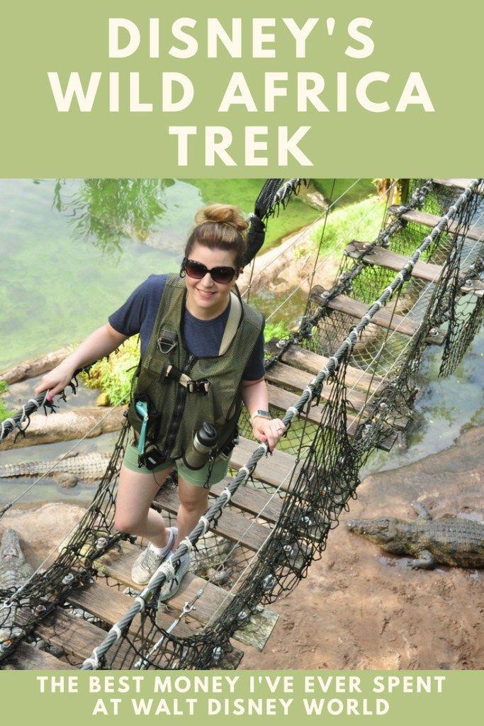 Wild Africa Trek   Animal kingdom disney, Vegan disney world