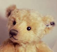 Afbeeldingsresultaat voor steiff teddybear