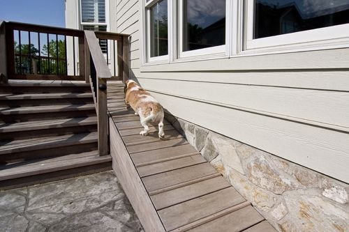 This Is A Must Have For All Of My Future Doxies Dog Ramp As Part Backyard Deck