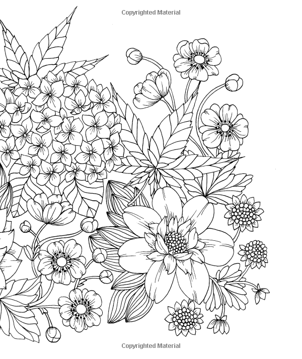 Amazon Com Twilight Garden Coloring Book Published In Sweden As Blomstermandala Gsp Trade 97 Flower Coloring Pages Coloring Books Gardens Coloring Book