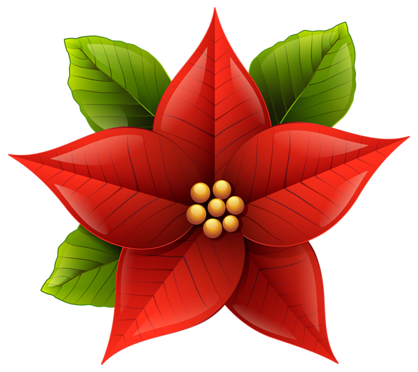christmas poinsettia png clip art image kar csony angyalok rh pinterest com poinsettia clipart free poinsettia clipart for embroidery
