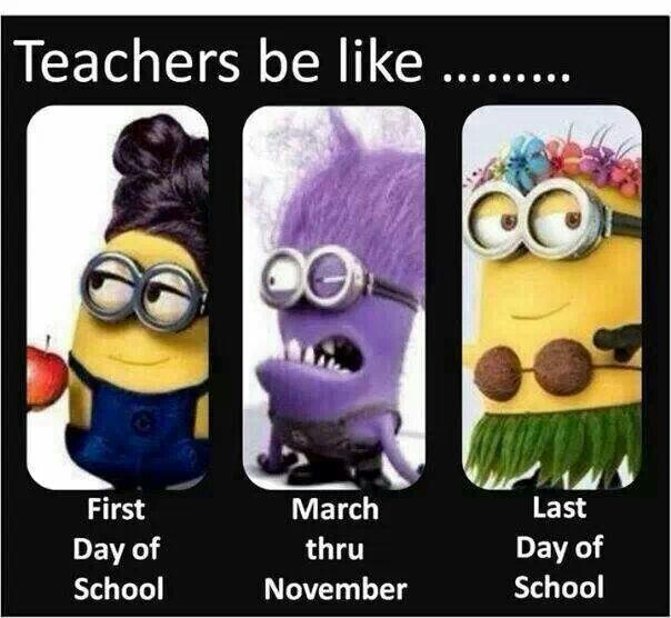 Teachers Be Like Funny Minion Quotes Minions Funny Minion Jokes