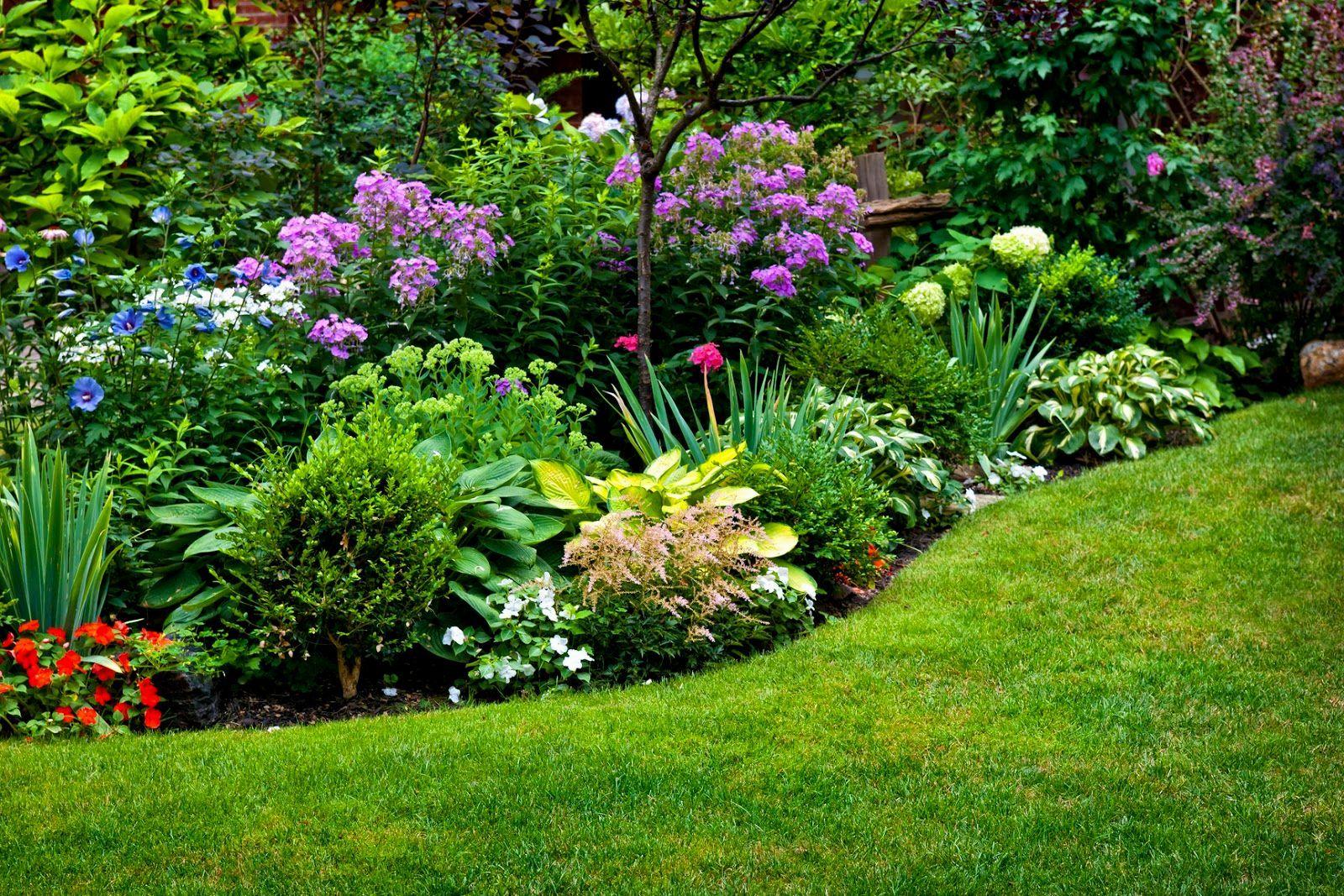 Unique Perennial Garden Ideas Zone 3 Online Elegant Perennial Garden Ideas Zone 3 Decoration Perennial Garden Design Perennial Garden Plans Plants