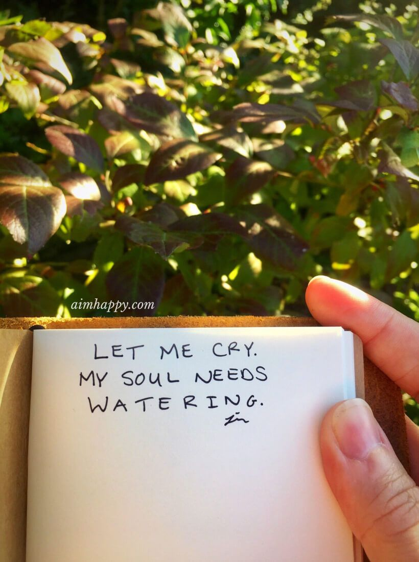 You don't need to apologize for tears. You need to release. You need to let the sky unleash the energy stored up in its clouds. You need to renew. #tears #feelyourfeelings #healing #takecareofyourself