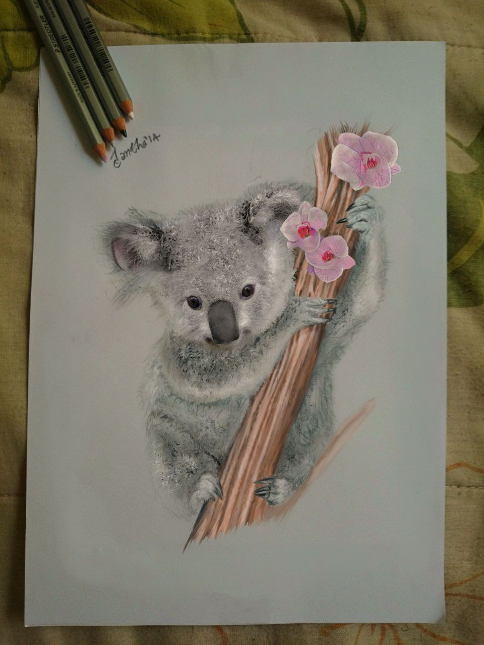 My Drawing A Koala Awww By Iangeliquein On Deviantart Koala