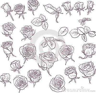 desenhos de rosas - Pesquisa Google