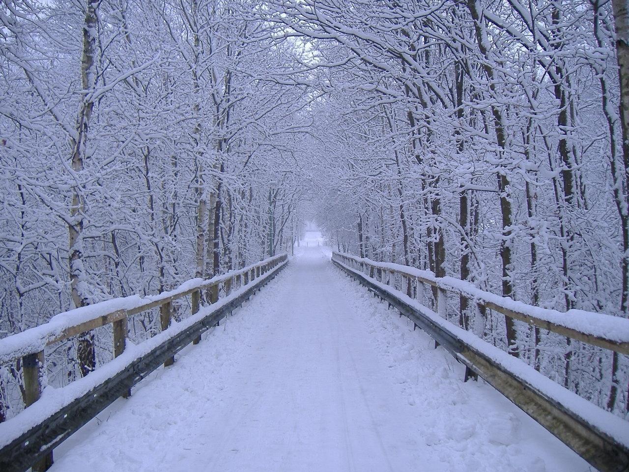 Winter Landscape Design Photos Winter Landscape Winter Scenery Winter Pictures