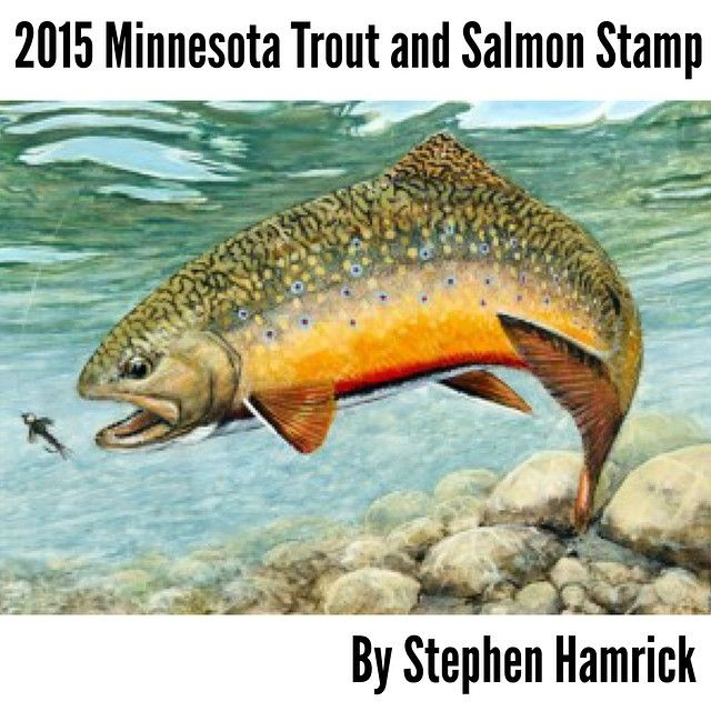 Wish4fishtv Just Ordered My 2015 Minnesota Trout And Salmon Fly Fishing Art Trout Painting Fly Fishing Flies Trout
