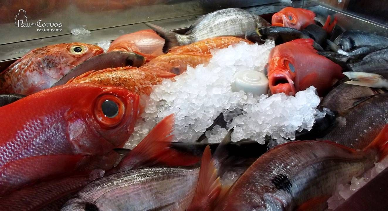 fresh fish #naudoscorvos | Gastronomy ~ Patrimonium ~ Experience ...
