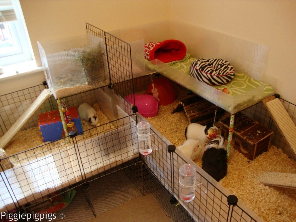 Awesome ideas for guinea pig hutch and cages diy guinea for How to make a guinea pig cage