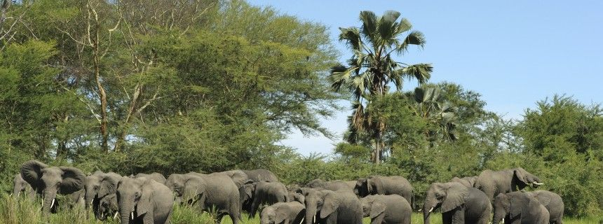 #Malawi: guide e consigli utili per il viaggio - Lonely Planet Italia