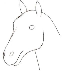 How To Draw A Horse Head Step 3 Drawings Horse Head Drawing