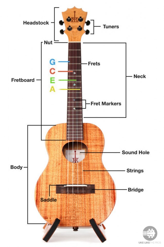 How To Tune A Ukulele For Beginners In 5 Easy Steps The Complete Guide 2019 Ukulele Easy Ukulele Songs Ukulele Songs