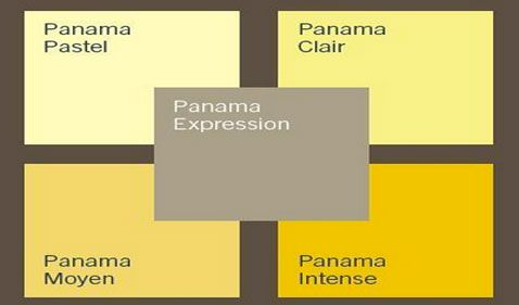 Comment associer la couleur jaune en déco d\'intérieur ?   Dulux ...