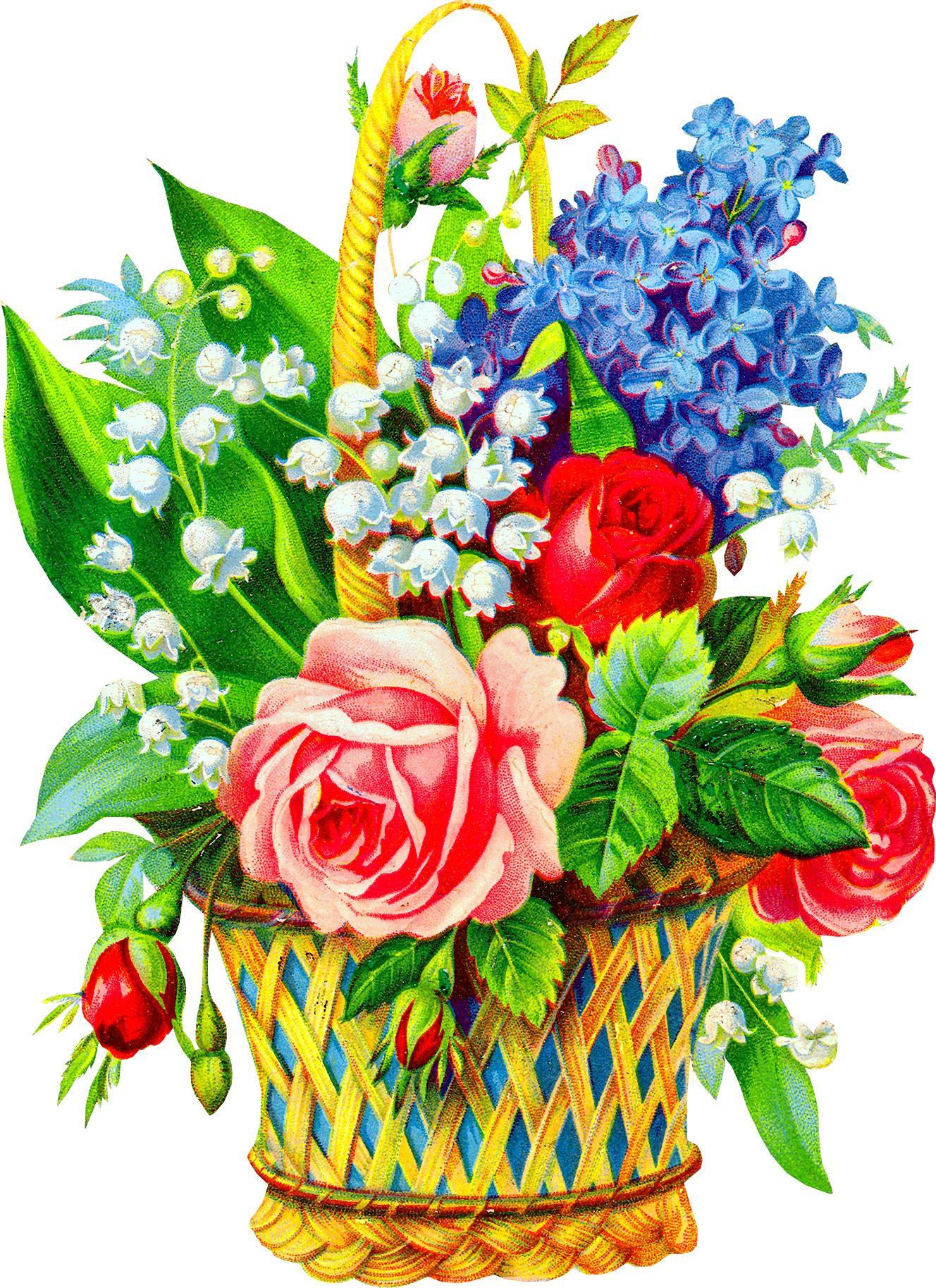 Цветы на открытку цветные, приколами про пятницу