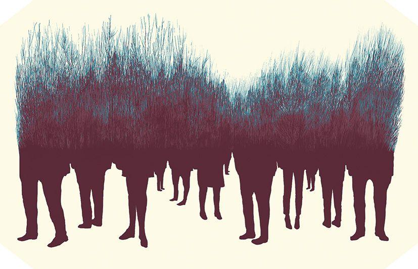 Sam Pash - Ilustración