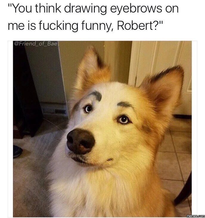 You think this is funny?