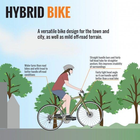 Anatomy Hybrid Bike Sepeda