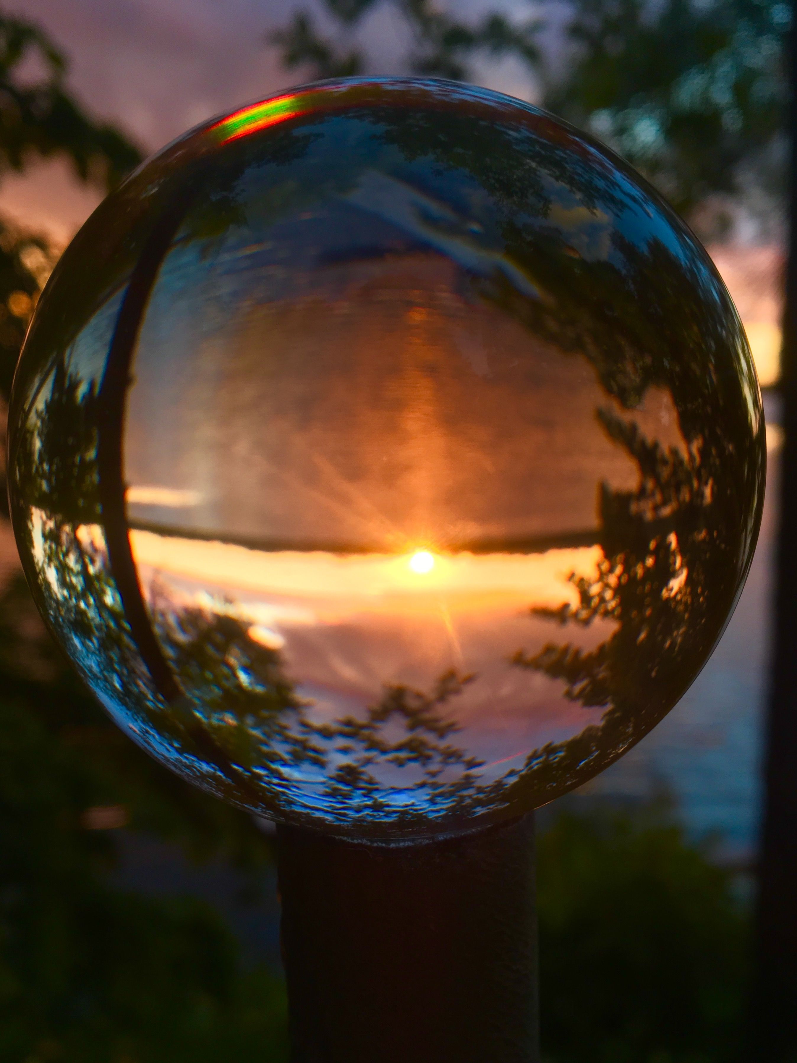 Through The Glass Through The Looking Glass Glass Ball