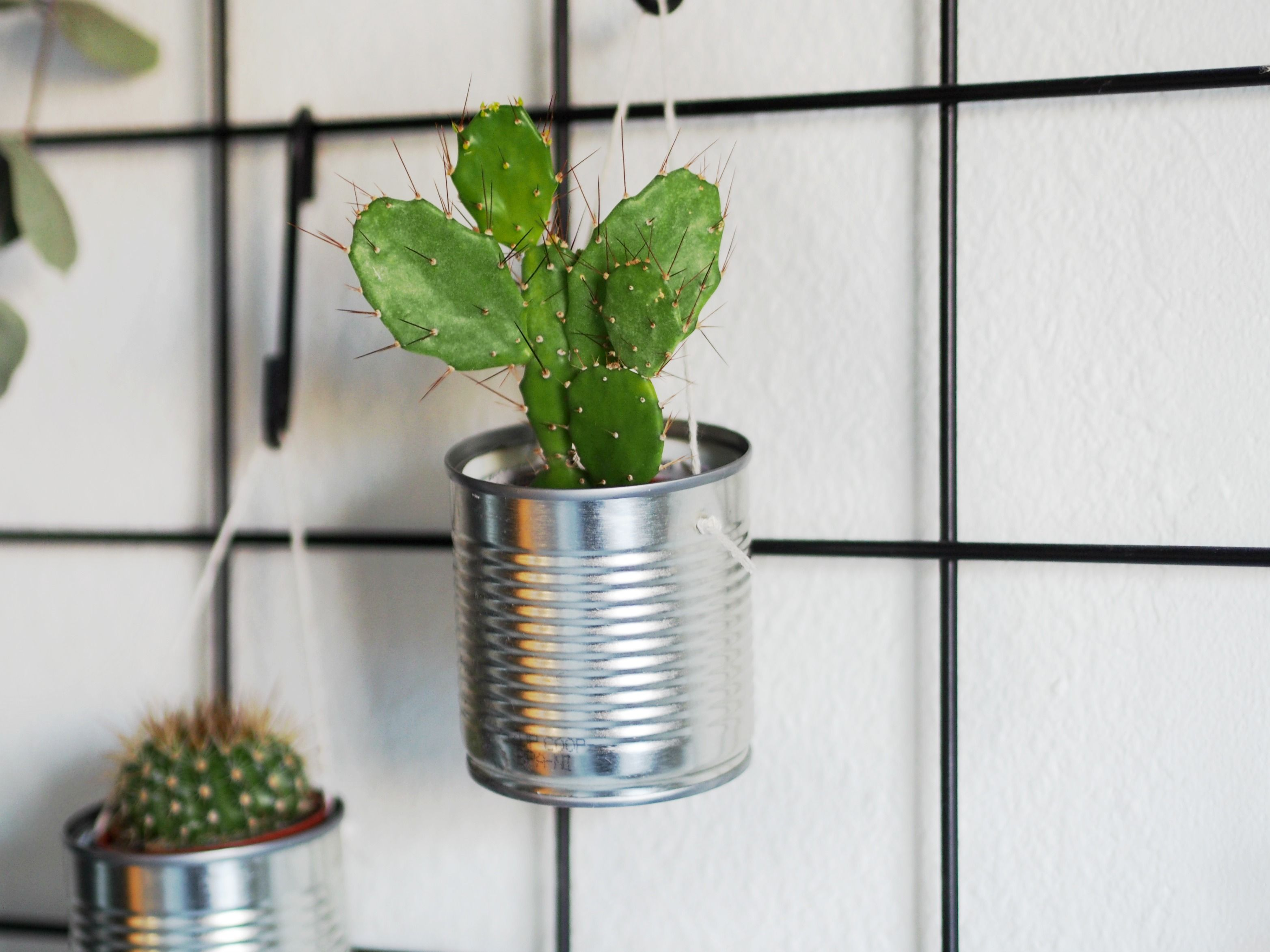 DIY hanging planter - Video tutorial: Lav dine egne DIY planteophng af  konservesdser