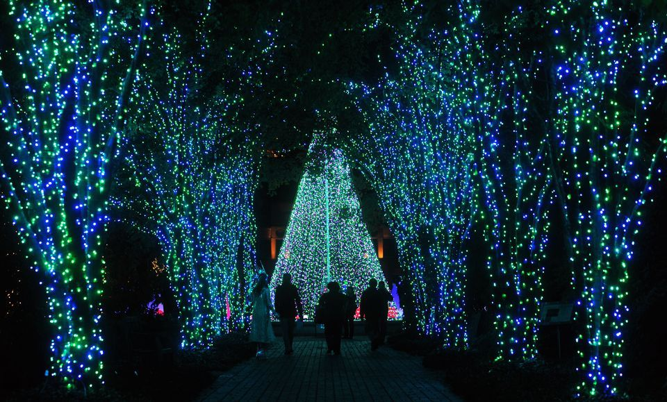 Holiday lights on display at Atlanta Botanical Gardens | www.wsbtv ...