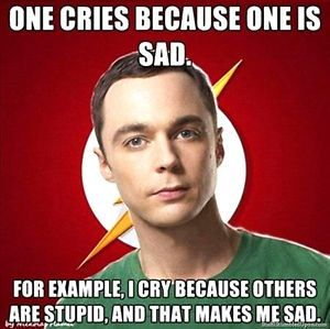 2-5-Funny-Dr-Sheldon-STICKER-Big-Bang-Theory-Looks-great-on-your-bong-or-pipe