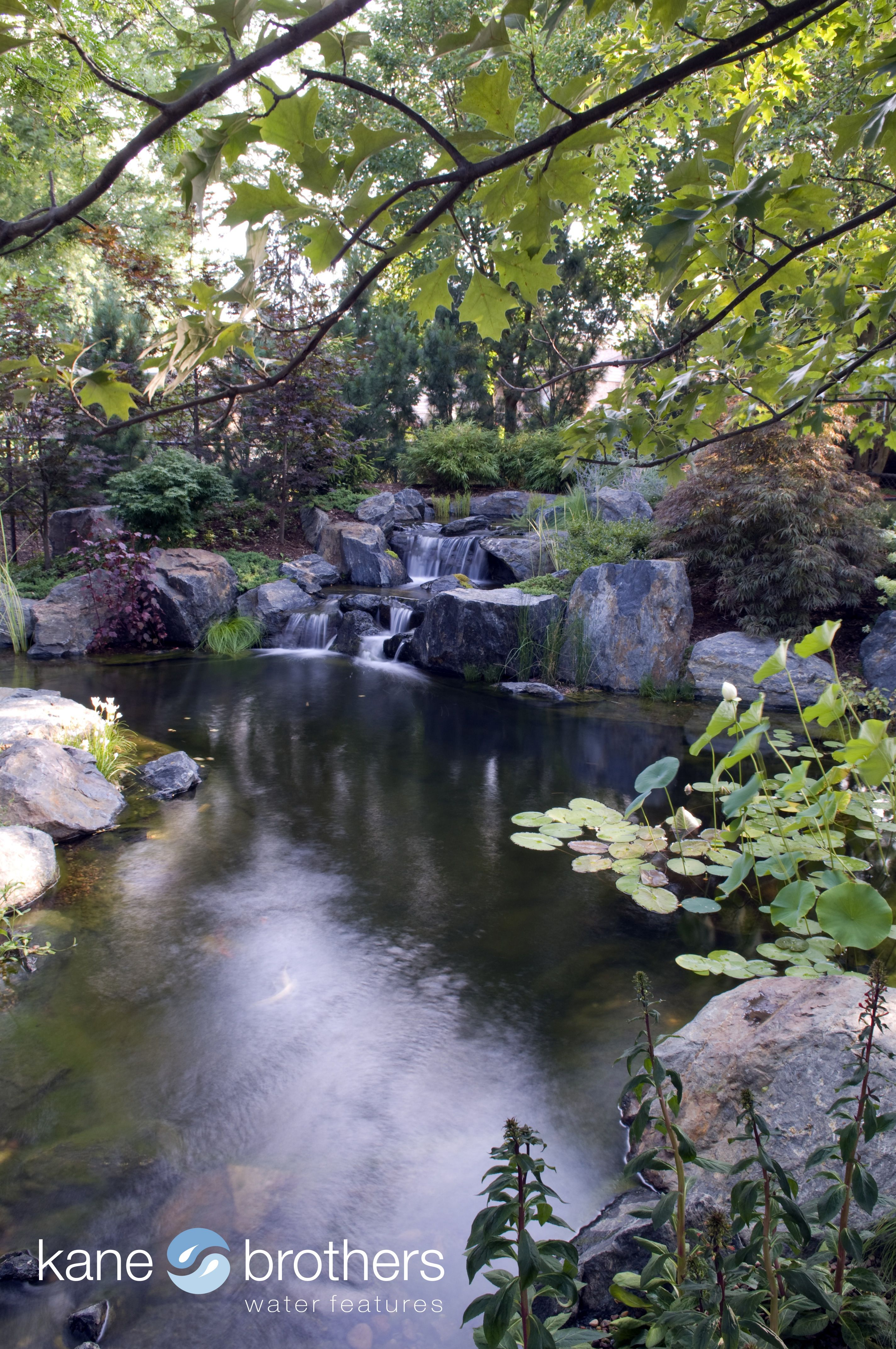 Natural Swim Pool By Kane Brothers Water Features