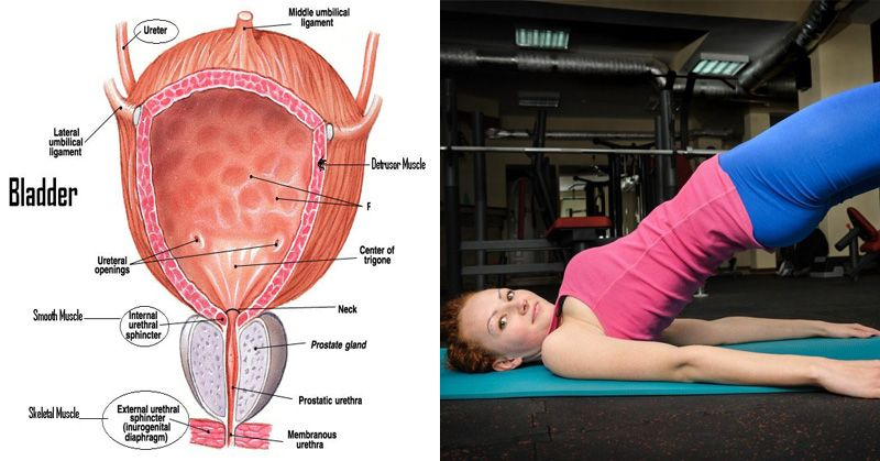 How to strengthen bladder muscles