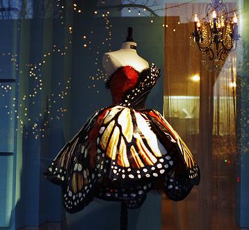 Dazzled by a dress