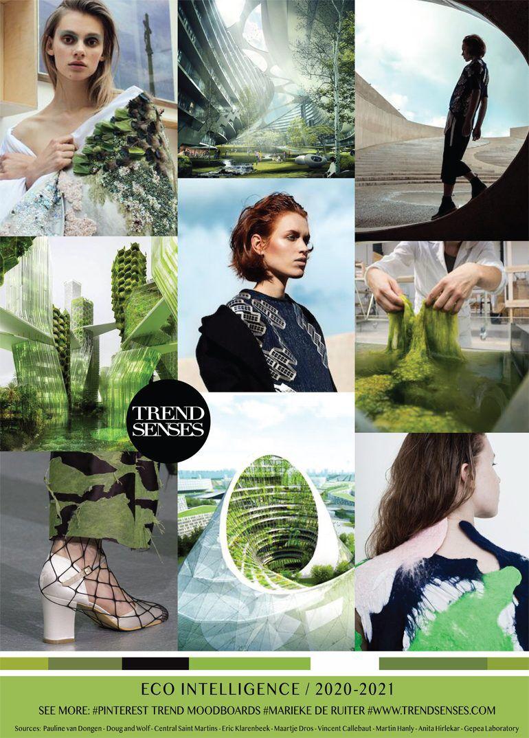 TRENDSENSES Eco Intelligence  As tendências de cores, Tendências
