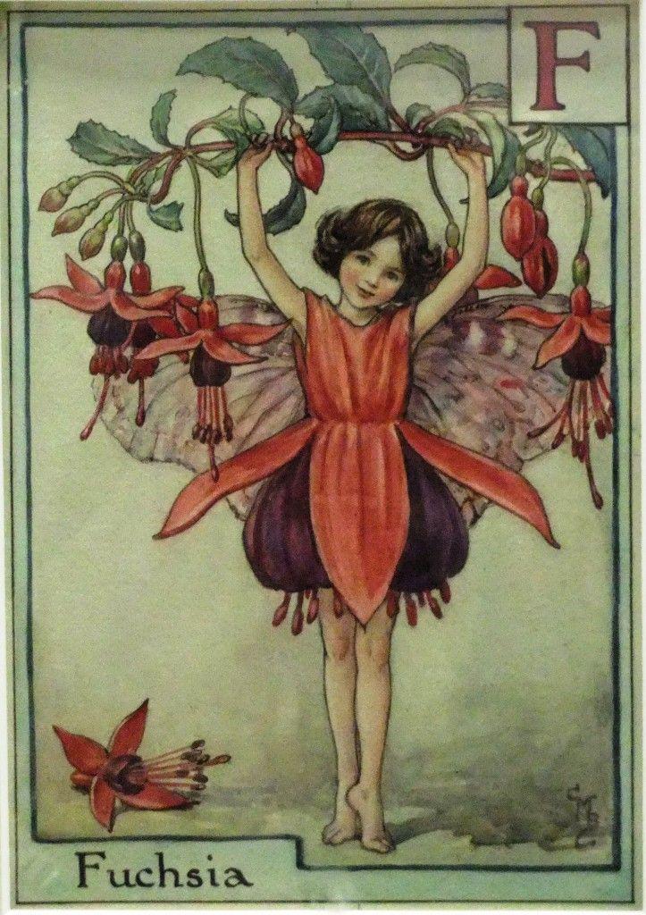 Chichester Copywriter Fuscia Flower Fairy Fairy Art Flower Fairies Vintage Fairies