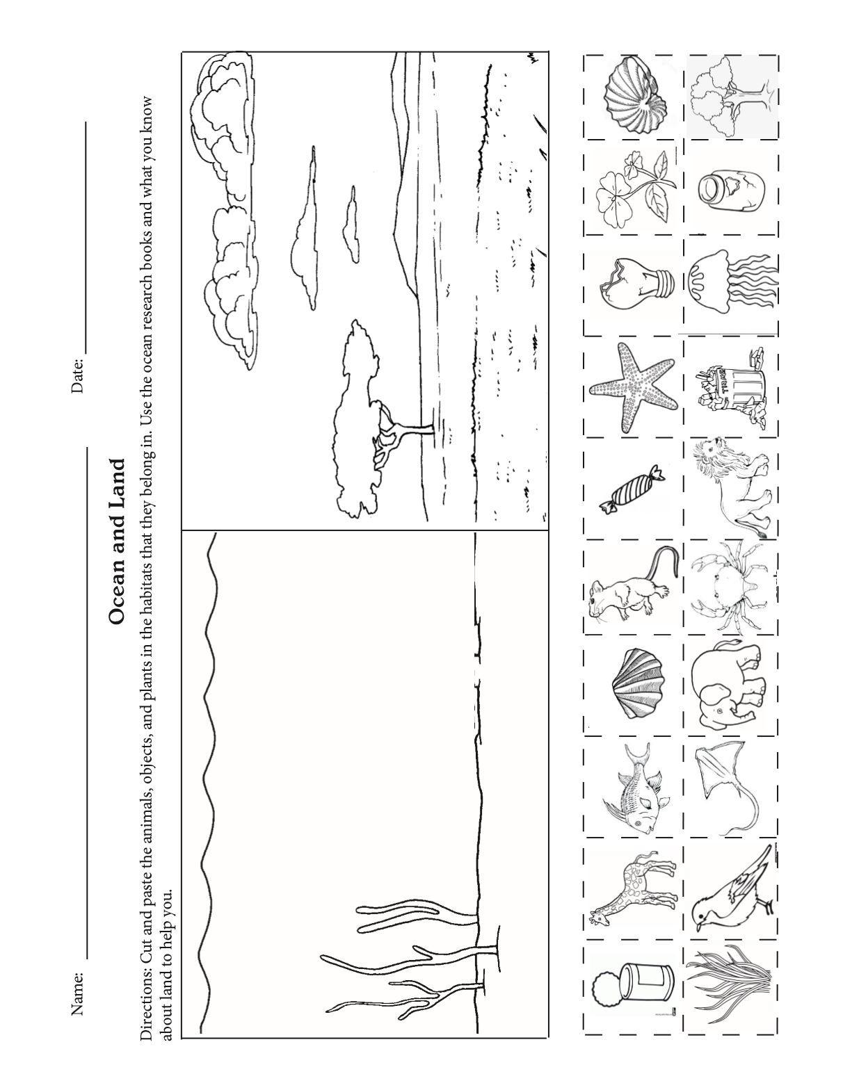 Land Habitat Worksheet   Printable Worksheets and Activities for Teachers [ 1568 x 1212 Pixel ]