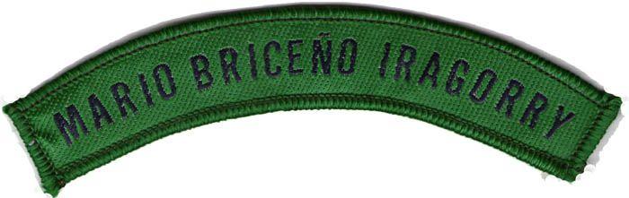 Disponible/available: 01.   Cintillos Mario Briceño Iragorry.