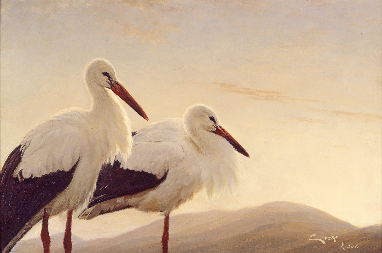 чеченку рисунки аистов картинки признание слава