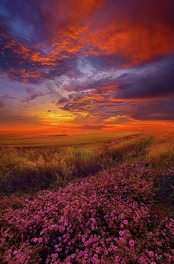 A Simple Purpose Fine Art Landscape Photography Fine Art Landscape Landscape Photography