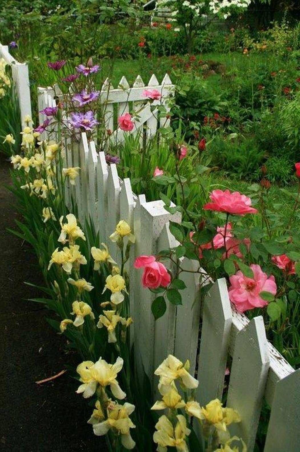 Gardening : Vegetable Garden Ideas, Vegetable Small Home Garden, Diy Grape  Arbor Plans,