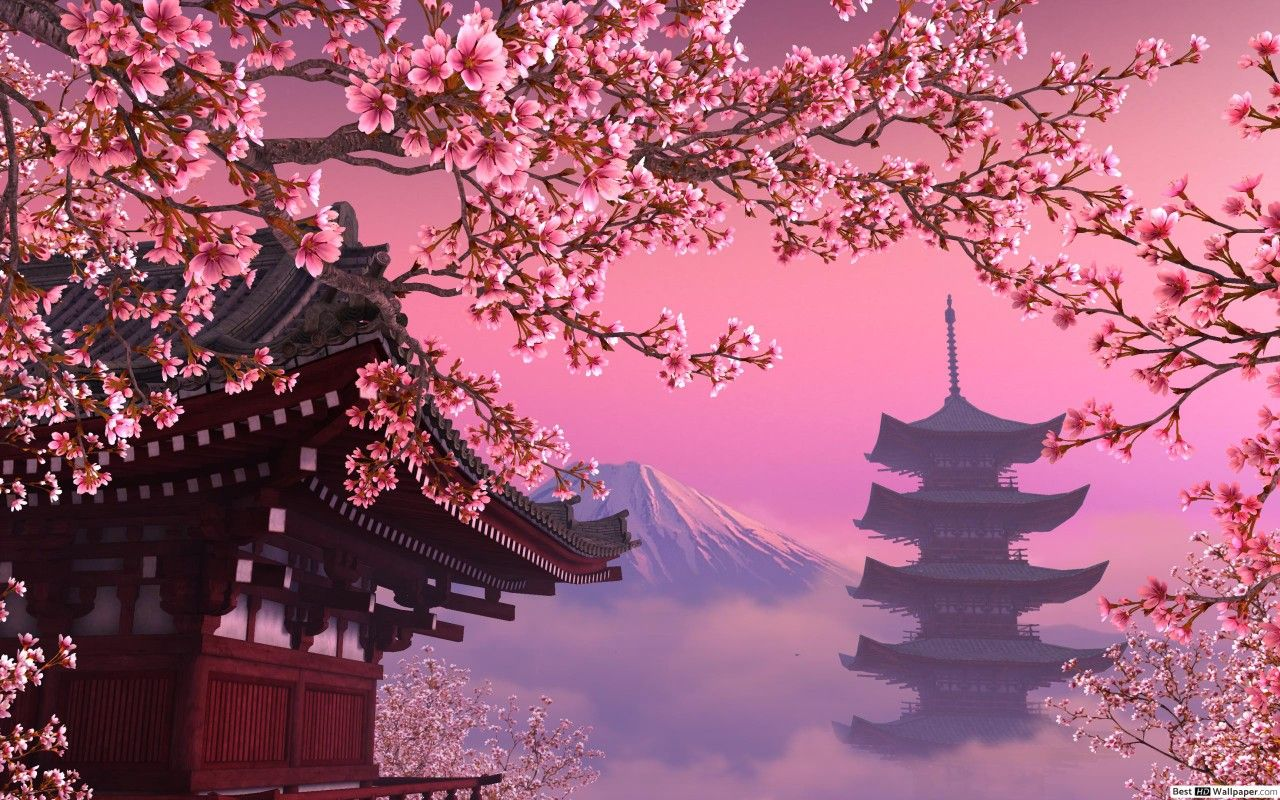 Pin By Gali Smile On Gne Cherry Blossom Wallpaper Anime Scenery Wallpaper Scenery Wallpaper