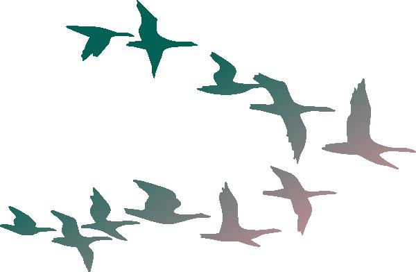 Birds flying. Cartoon flock of images