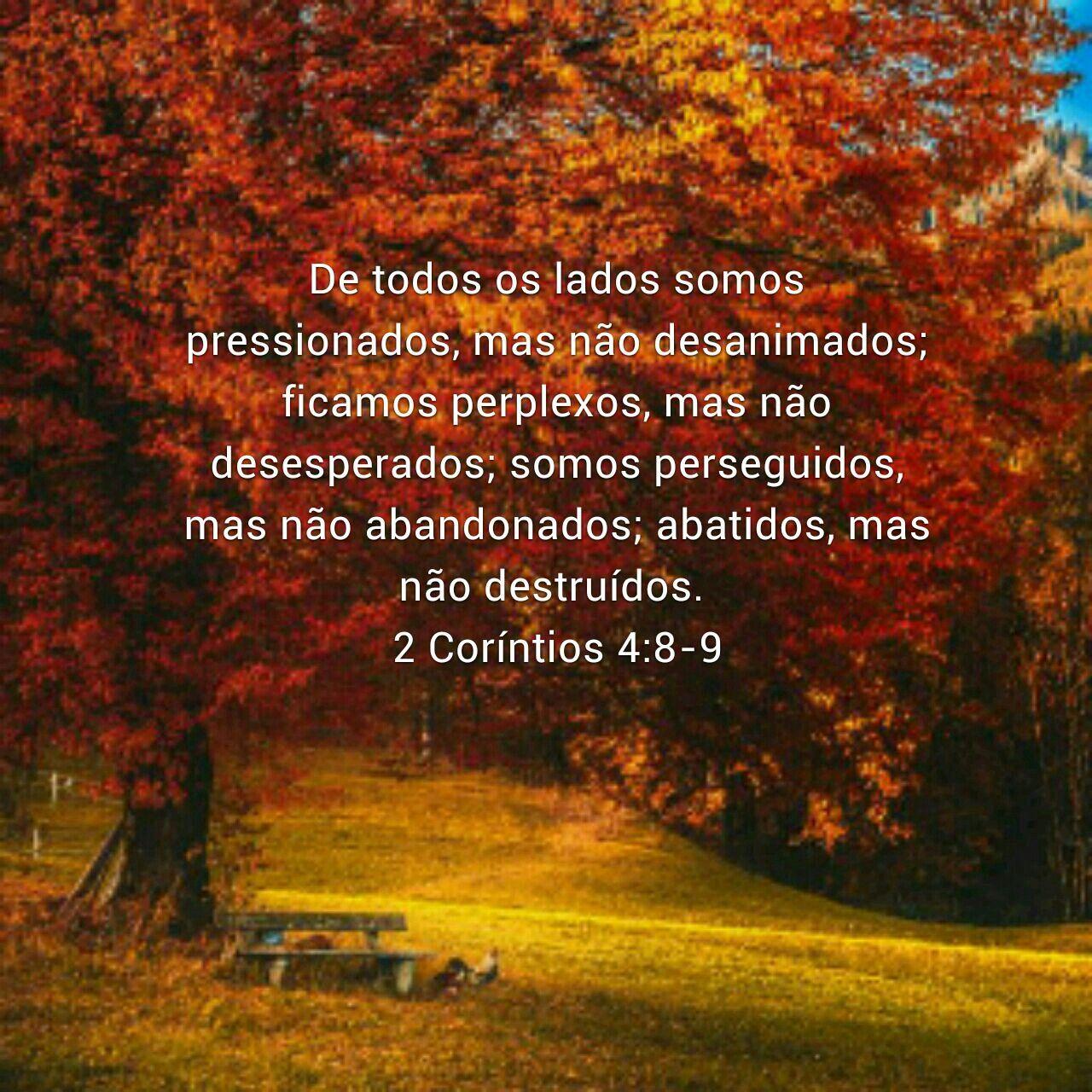 Ii Corintios 4 8 9 Corintias Ii Corintios Palavra De Deus