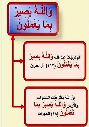 Pin By كتابا متشابها On ٤٩ سورة الحجرات Novelty Sign Mind Map Map