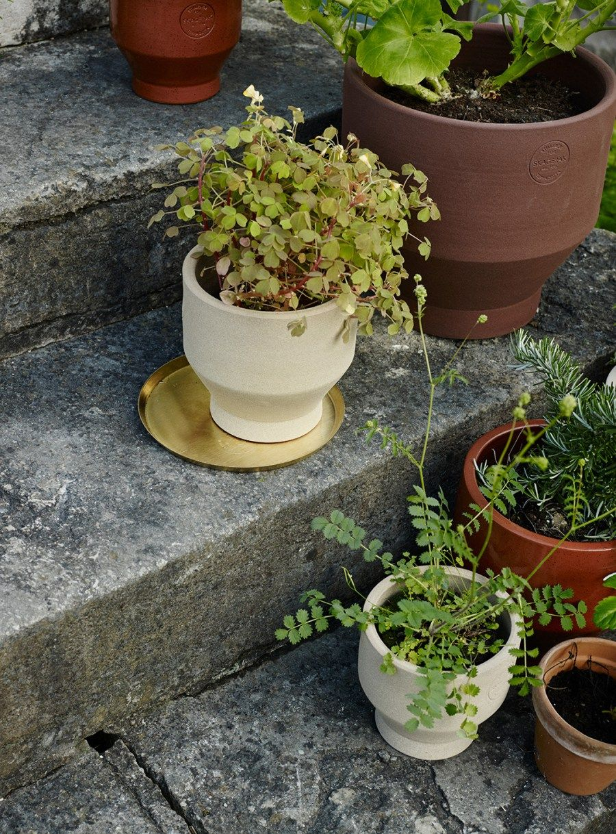 Planter Lys En Pot 20 Of The Best Minimal Plant Pots And Planters 書院 Outdoor