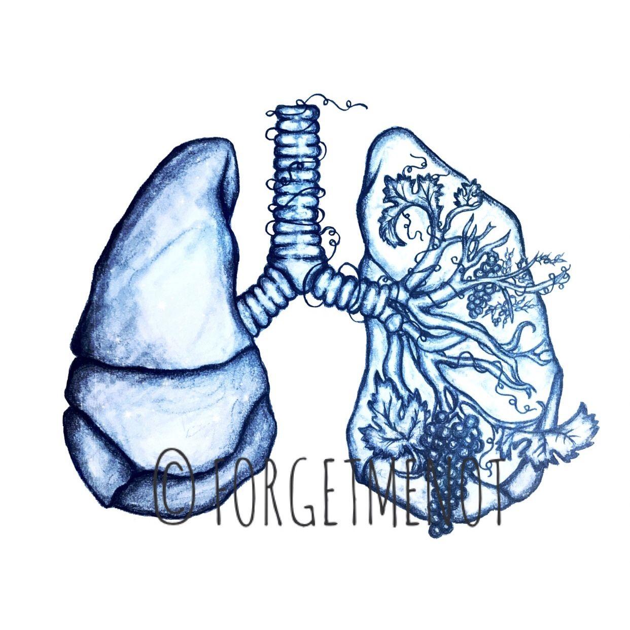 Drawing Art Anatomical Art Anatomy Art Flower Art Lung Lung Art