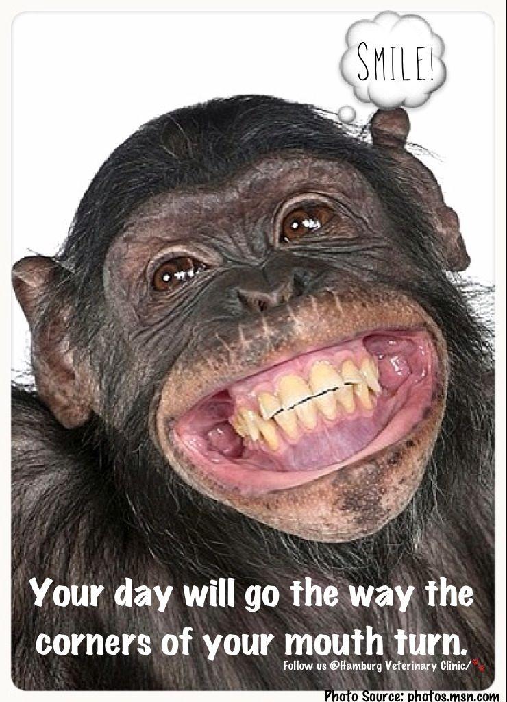 Smile Brand new day Good Morning Attitude Happy
